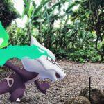 Pokemon GO AR