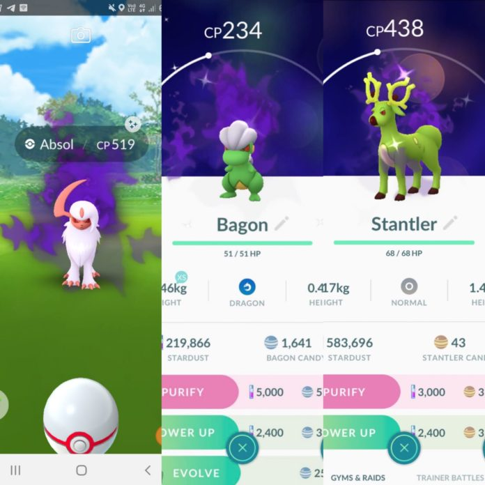 New Shiny Shadow Pokémon: Absol, Stantler and Bagon