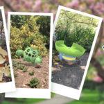 New Pokémon Snap Celebration Event